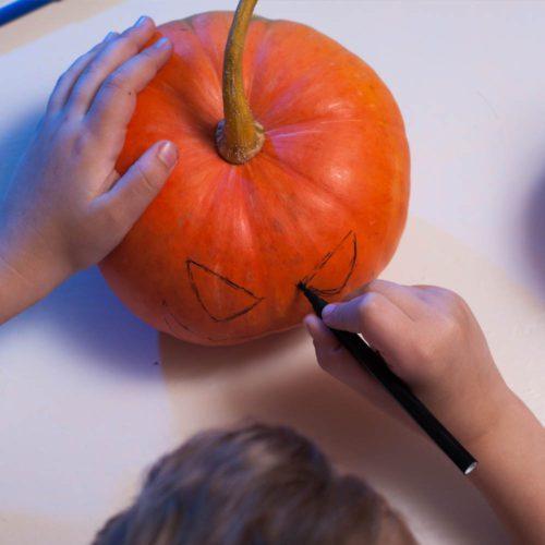 School Pumpkins